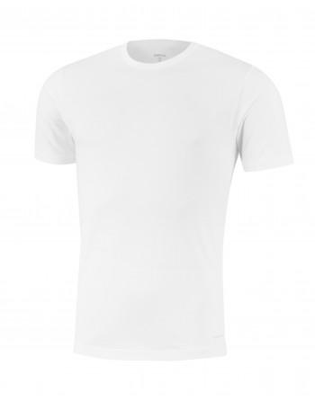 Camiseta M/C- Innovation -Impetus-Hombre